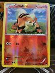 Growlithe - 10/122 - Common - Reverse Holo XY BREAKpoint Pokemon Near Mint