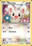 Pokemon Card Minccino Black Star Promo BW13 EXCELLENT Holo TCG!!!!!!!!!!!!!!!!!!